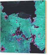 Abstract Corrosive Metal Background With Turquoise Paint Cracks Wood Print
