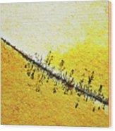 Abstract Crack Line On The Orange Rock Wood Print