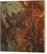 Abstract Design 23 Wood Print