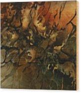 Abstract Design 59 Wood Print