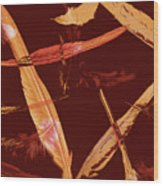 Abstract Feathers Falling On Brown Background Wood Print