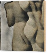 Abstract Female Figure In Grey  Wood Print