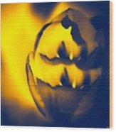 Abstract First Woman Wood Print