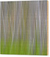 Abstract Forest 2 Wood Print