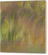 Abstract Grasses Wood Print by Ron Hoggard