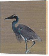 Abstract Heron Art Wood Print