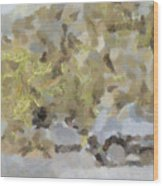 Abstract Image Of Car Passing Through A Dust Storm Wood Print