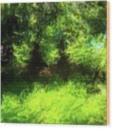 Abstract Nature 834 Wood Print