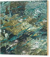 Abstract Of The Underwater World. Production By Nature Wood Print
