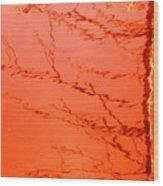 Abstract Orange Wood Print