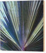 Abstract Palm Leaf Wood Print