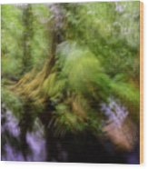 Abstract Rain Forest Wood Print