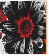 Abstract Red White And Black Daisy Wood Print