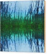 Abstract Reeds No. 1 Wood Print