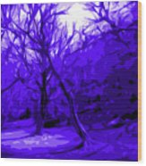 Abstract Sanctuary Wood Print