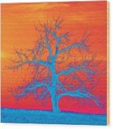Abstract Single Tree Blue-orange Wood Print