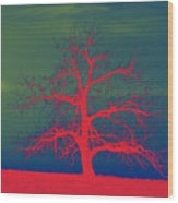 Abstract Single Tree Red-blue-green Wood Print
