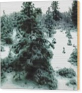 Abstract Snowy Trees Lighter Wood Print