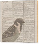 Abstract Sparrow On Dictionary Wood Print