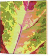 Abstract Summer's End Wood Print