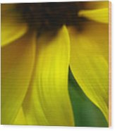 Abstract Sunflower Wood Print