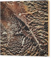 Abstract Surface Bumpy Stone Wood Print