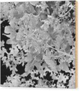 Abstract Tree Landscape Dark Botanical Art Black Noir Wood Print