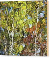 Abstract Tree Reflection Wood Print