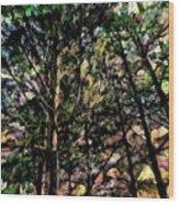 Abstract Trees 691 Wood Print
