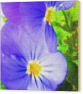 Abstract Violets Wood Print
