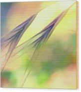 Abstract Weeds Yellow Wood Print