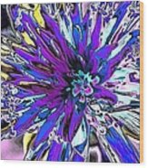 Abstract Wildflower 9 Wood Print