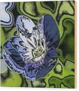 Abstract Wildflower Wood Print