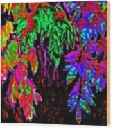 Abstract Wisteria Wood Print