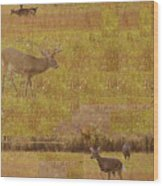 Abstract With White Tailed Deer Wood Print