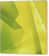 Abstract Yellow And Green Wood Print
