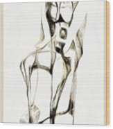 Abstraction 2182 Wood Print