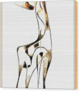 Abstraction 2919 Wood Print