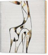 Abstraction 2922 Wood Print
