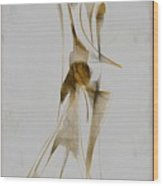Abstraction 2931 Wood Print