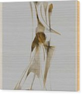 Abstraction 2932 Wood Print