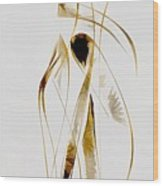 Abstraction 2933 Wood Print