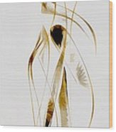 Abstraction 2934 Wood Print