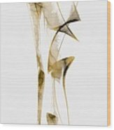 Abstraction 2937 Wood Print
