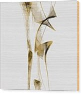 Abstraction 2939 Wood Print