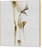 Abstraction 2940 Wood Print