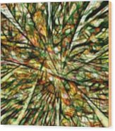 Abstraction 3099 Wood Print