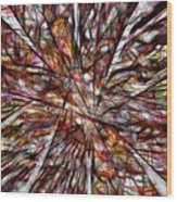 Abstraction 3100 Wood Print