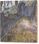 Abstraction In Color And Texture From Wet Rock Wood Print