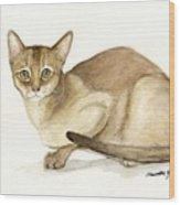 Absyssinian Cat Wood Print